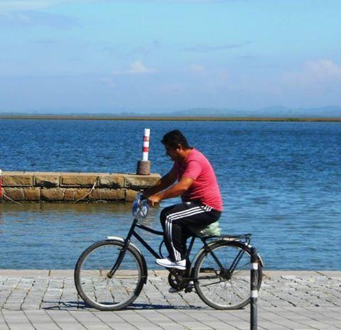 Dia do Pedal